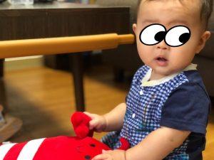 クッションで遊ぶ赤ちゃん